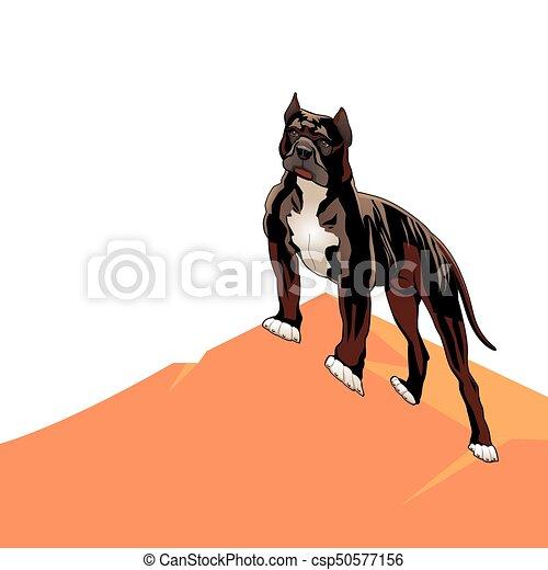 Pedigree pitbull cane cartone animato fondo bianco