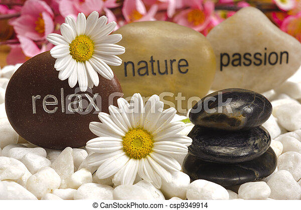 pedras, jardim, natureza, relaxe, zen, paixão - csp9349914