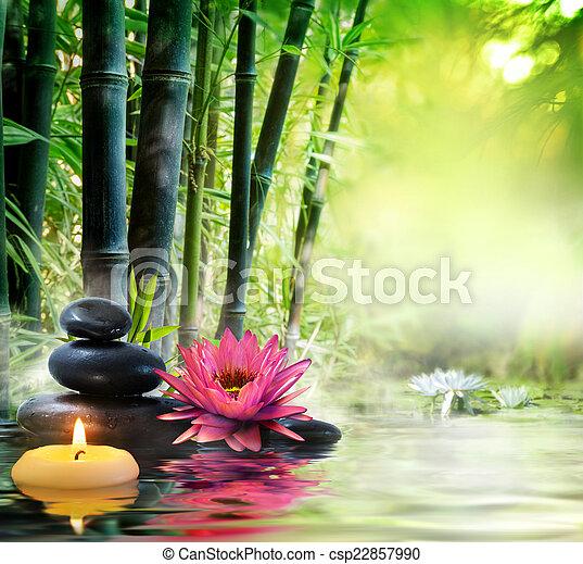 pedras, lírio, -, massagem, natureza - csp22857990
