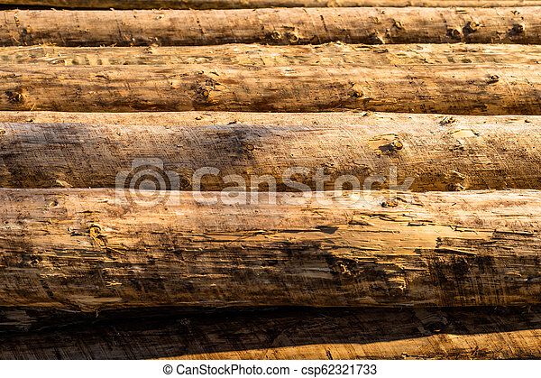 Peeled logs lying in piles on the ground on a sunny day. - csp62321733