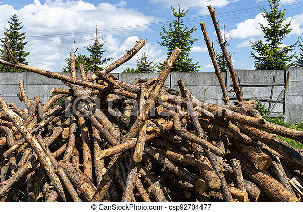 Peeled, uncut logs lying on a pile on the ground in the backyard. - csp92704477