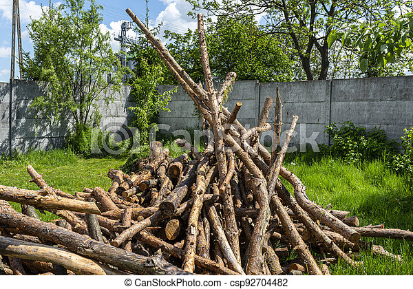 Peeled, uncut logs lying on a pile on the ground in the backyard. - csp92704482