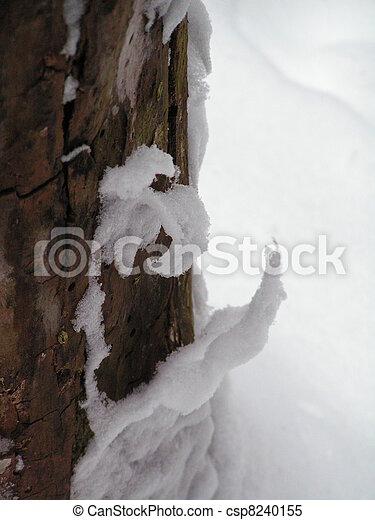 peeling snow - csp8240155