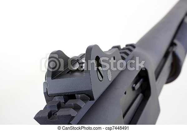 peep sight rear sights that are peeps on a pump action shotgun on