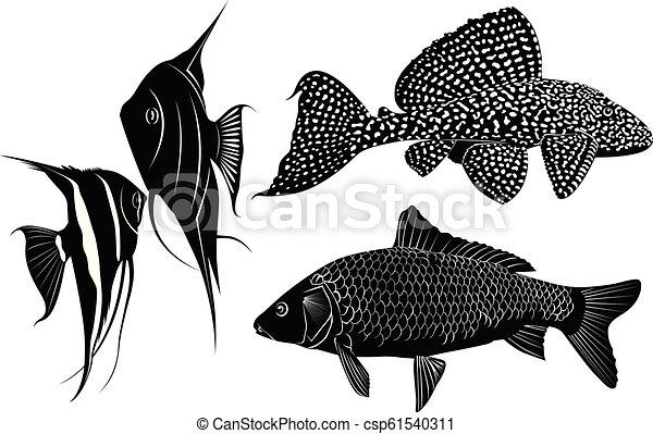 peixe, jogo, silhuetas - csp61540311