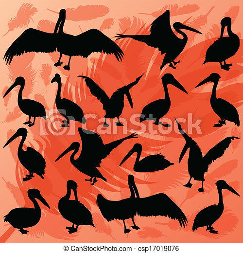 Pelican bird detailed wildlife silhouettes illustration collection background vector - csp17019076