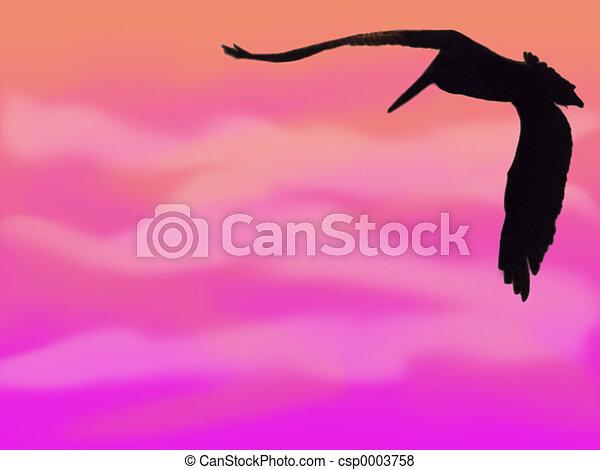 Pelican Silhouette2 - csp0003758