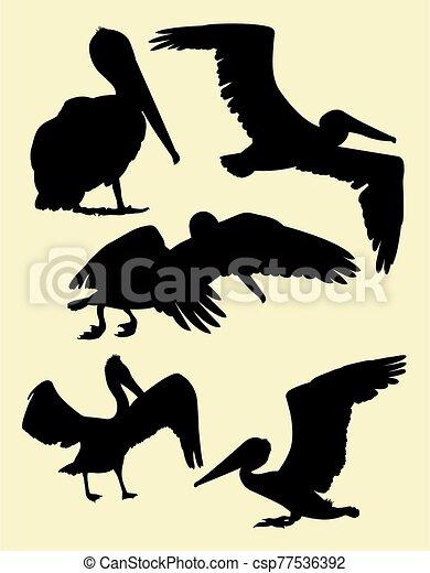 Pelican silhouettes 02. - csp77536392