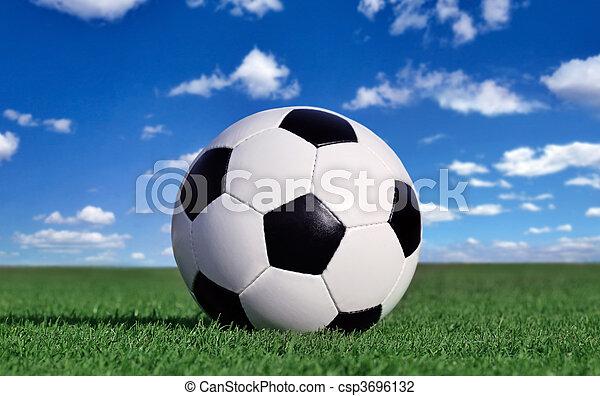 Bola de fútbol - csp3696132
