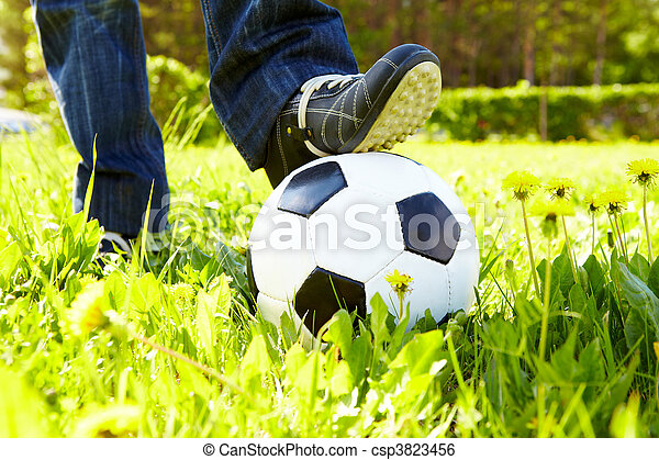 Bola de fútbol - csp3823456
