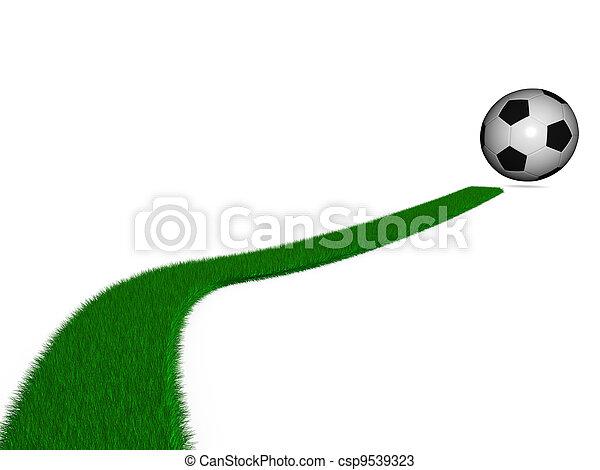 Bola de fútbol - csp9539323