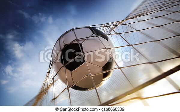 Bola de fútbol - csp8660309