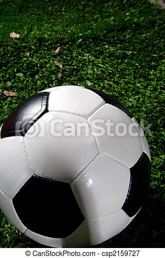 Bola de fútbol o fútbol en la hierba - csp2159727
