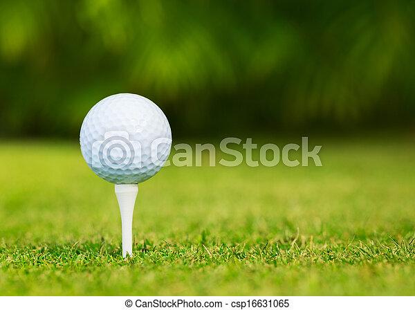 Vista de cerca a la pelota de golf en el campo de golf - csp16631065