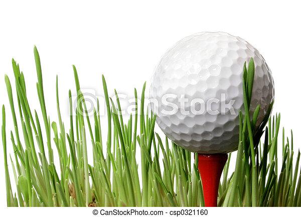 Bola de golf en la hierba - csp0321160