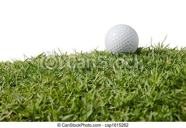 Bola de golf sobre hierba - csp1615262