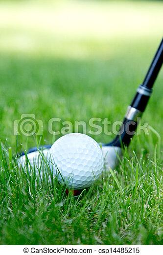 Bola de golf - csp14485215