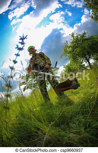 pelouse, homme, chevêtre - csp9660937