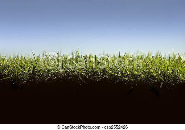 pelouse, niveau, projection, croix, herbe, section, terrestre - csp2552426