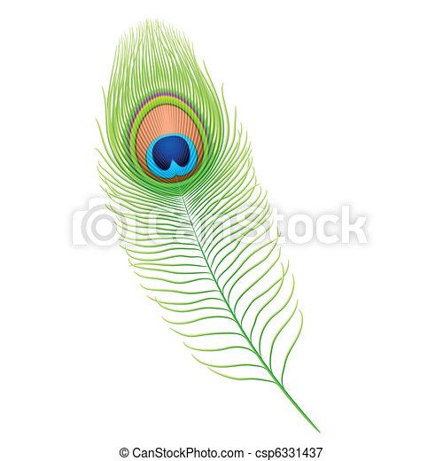 pena pavão - csp6331437