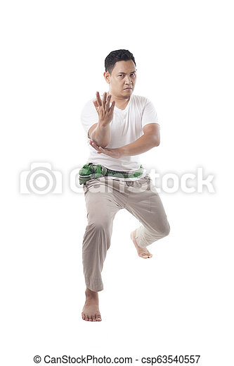 Pencak Silat, Indonesian Traditional Martial Art - csp63540557