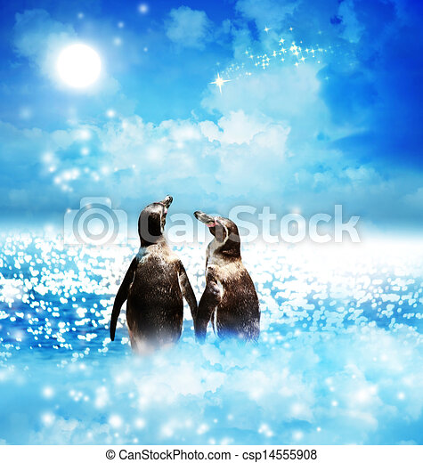 Penguin couple in night fantasy landscape - csp14555908
