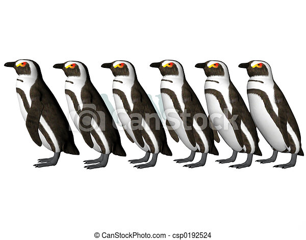 Line Drawing Penguin : Penguin row. isolated row of penguins drawing search clip art