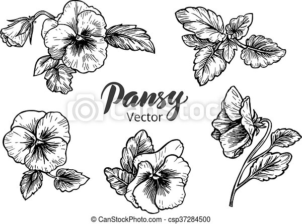 pens e dessin fleurs main style illustration clipart vectoriel rechercher. Black Bedroom Furniture Sets. Home Design Ideas