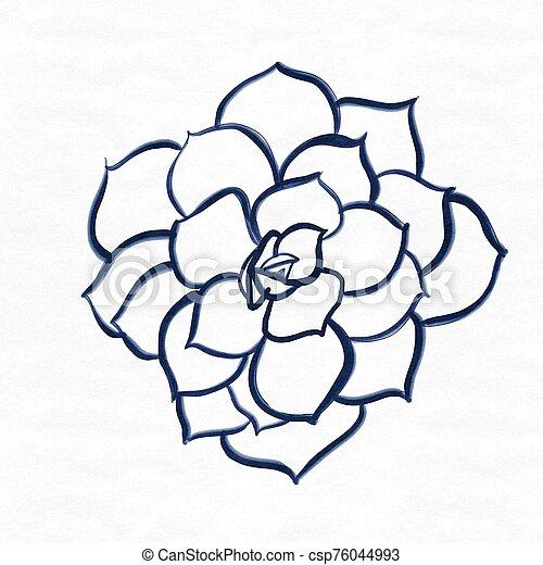 peonies flower hand drawn on textured background - csp76044993