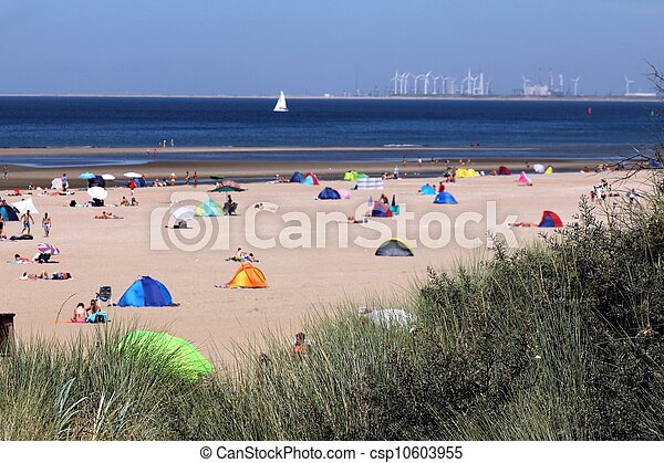 people relaxing on the beach behind reed - csp10603955
