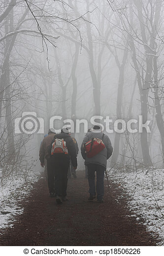 People walking by misty road in the park - csp18506226
