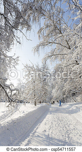People walking in the winter park - csp54711557