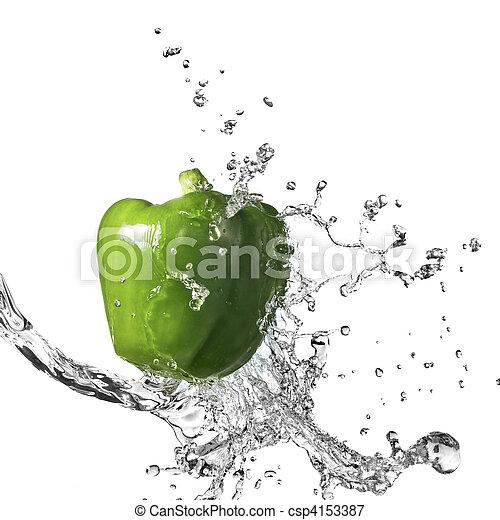pepe, dolce, isolato, acqua, schizzo, verde, fresco, bianco - csp4153387