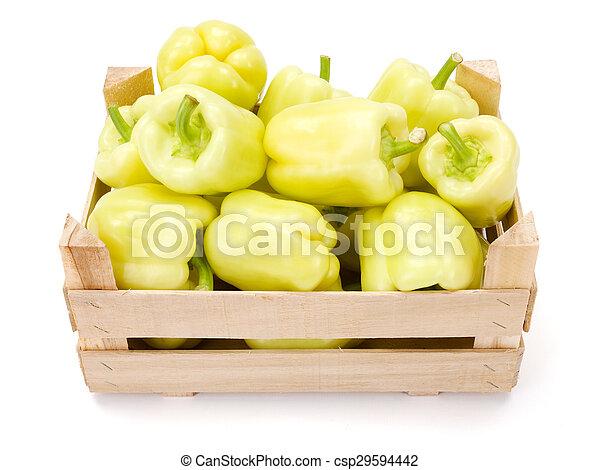 pepers, (capsicum, gele, annuum), klok - csp29594442