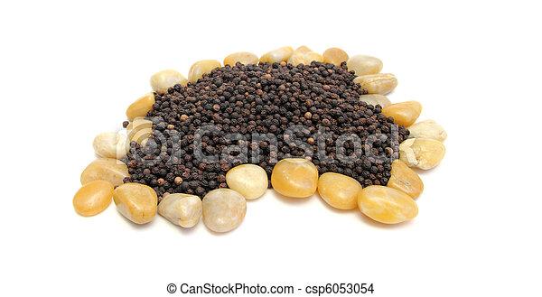 pepper nest - csp6053054