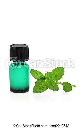 Peppermint Herb Leaf and Essence - csp2213513