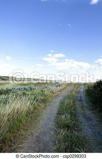 Pequeña carretera de tierra - csp0299303