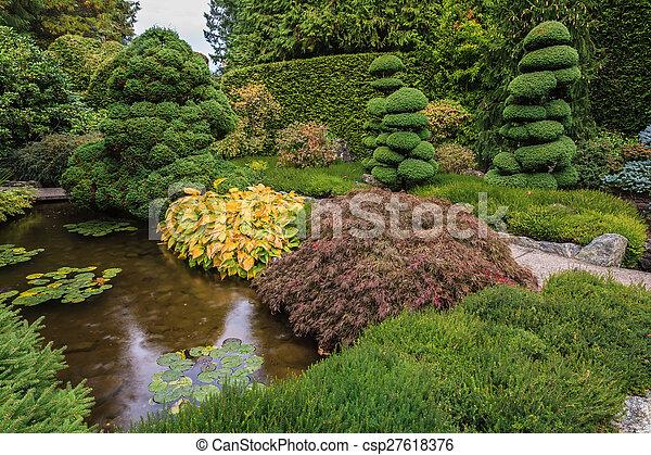 Un pequeño estanque con lirios - csp27618376