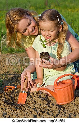 pequeno, mulher, alimento saudável, crescendo, menina - csp3646541