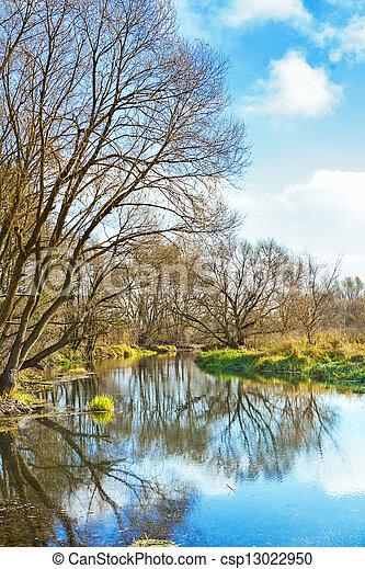 pequeno, non, rio, frondoso, árvores - csp13022950