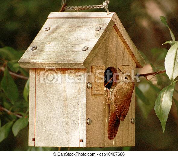 Pájaro de pajarera se posó para abrir - csp10407666