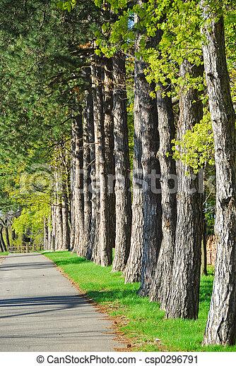 percorso, parco - csp0296791