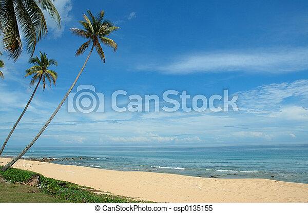 perfect holiday - csp0135155