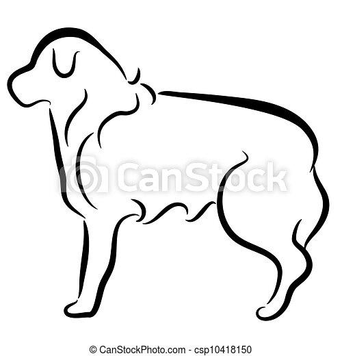perfil, collie, abstratos, cão, elegante, borda - csp10418150