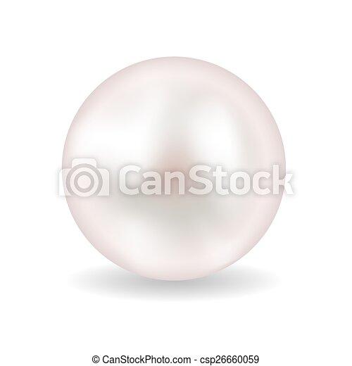 perla, vektor, ilustrace - csp26660059
