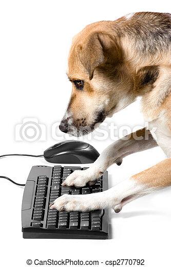 Perrito en teclado con ratón - csp2770792