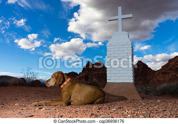 Perro tendido por una cruz blanca en el desierto - csp36936176