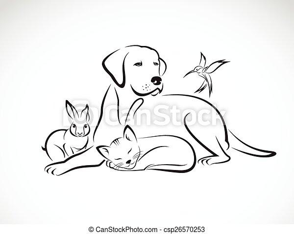 Grupo Vector de mascotas: Perro, gato, pájaro, conejo, aislado en el fondo blanco - csp26570253