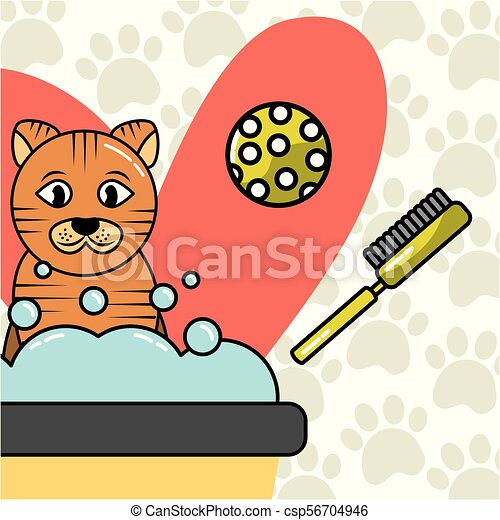 Mascotas perro y gato - csp56704946