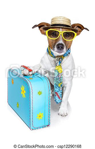 Perro turista de vacaciones - csp12290168